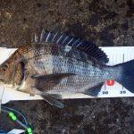 今年最後の釣行で40UPゲット。(2日連続釣行記)