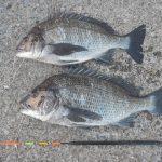 渚釣りの3大苦。