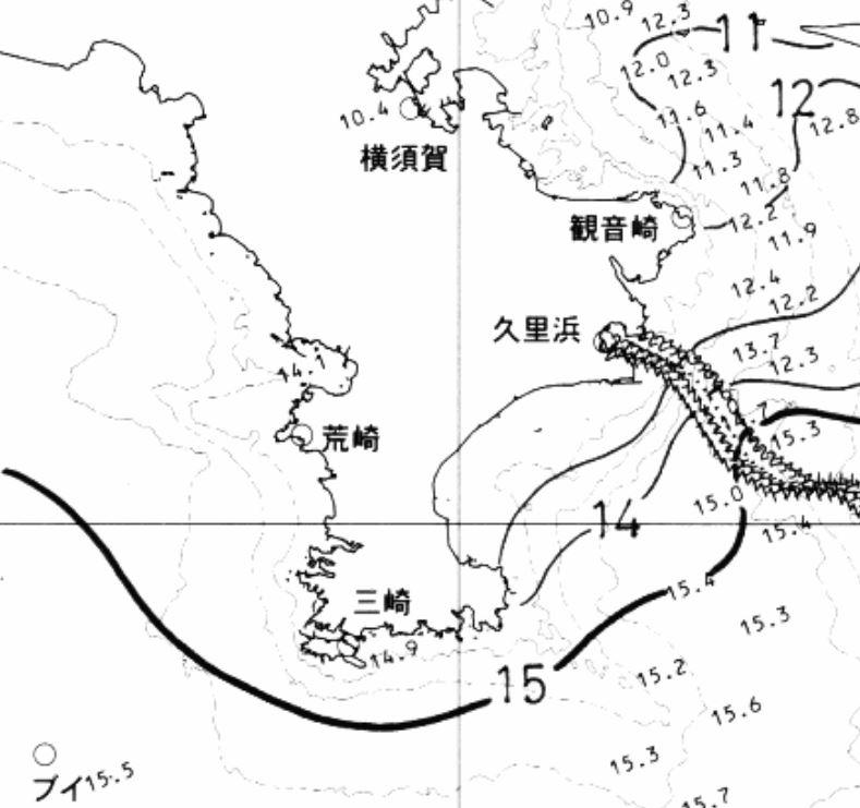 東京 湾 海 水温